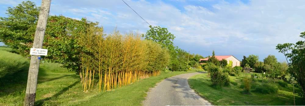 Des vue panoramiques du jardin - Vue de jardin ...