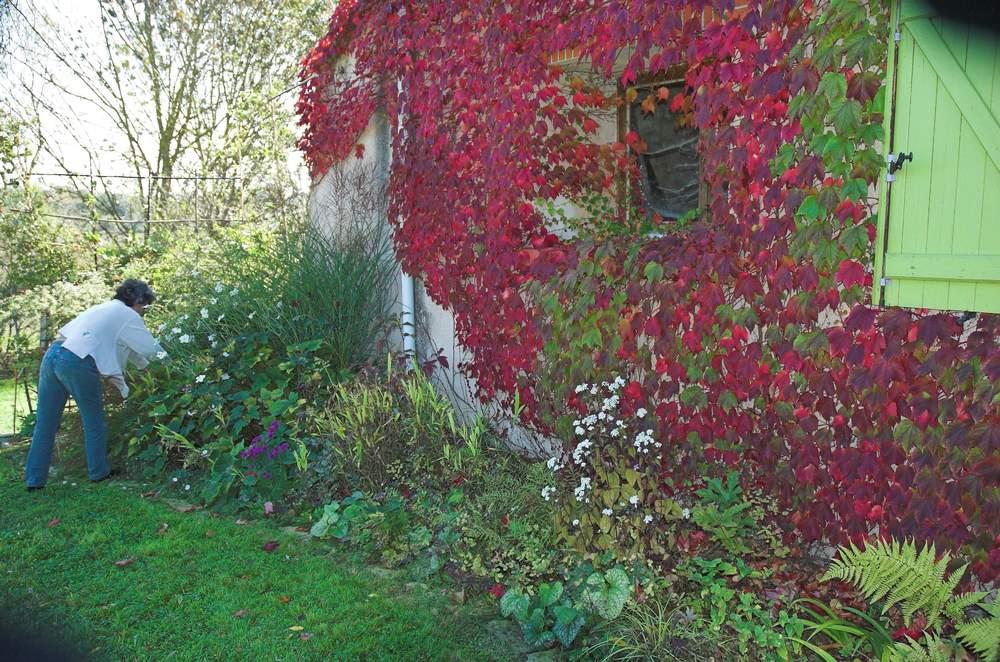 Des massifs de fleurs contre la maison probl me au jardin forum de jardinage - Plante contre l humidite dans la maison ...