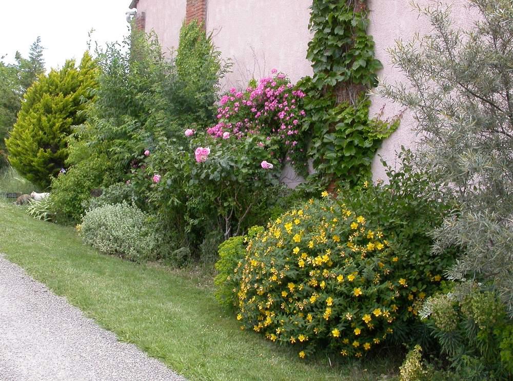 Arbuste Pour Terrain Calcaire quelles plantes en sol argileux/calcaire exposé au sud