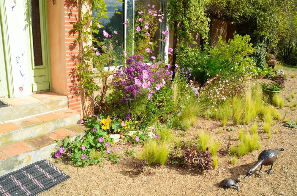 Quoi Planter Dans Une Terre Argileuse quelles plantes en sol argileux/calcaire exposé au sud